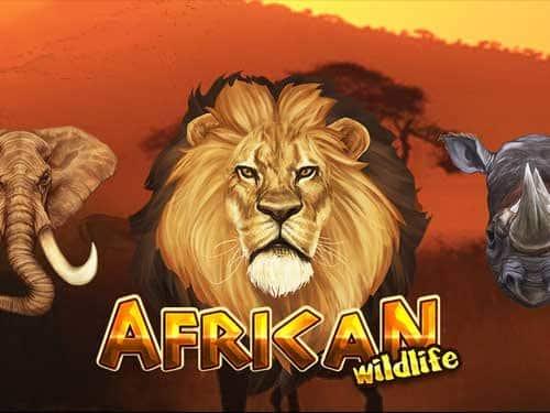 Fun Gaming african-wildlife-slot
